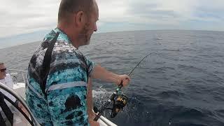 Jízda tuňák