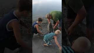 Rodinka na mobilheim Rhone / pouštěčka sumec