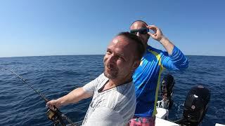 Tuňák jízda