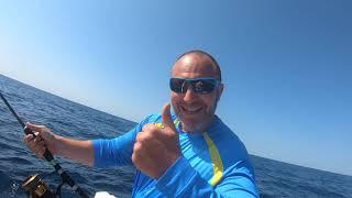 Tuňák - k nezastavení