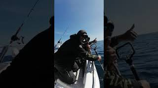 Zdolaná ryba